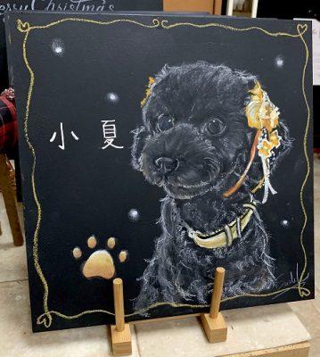 動物アート工房animoさん チョークアート 小夏ちゃん