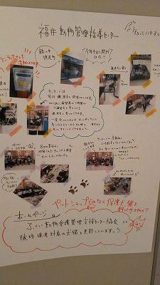 2019.1.19 101匹手描きのわんにゃんプロジェクト6