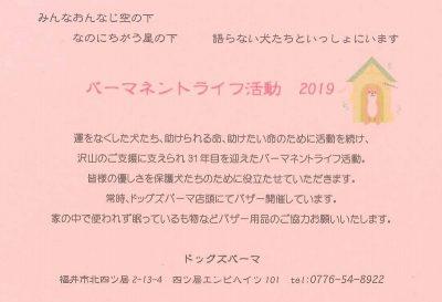 2019.5 パーマネントさん薔薇