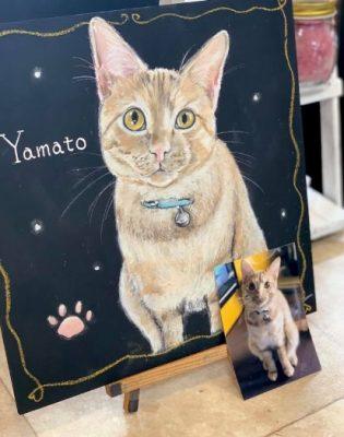 動物アート工房animoさん チョークアート Yamatoちゃん