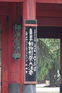 2019.7.21 動物慰霊祭大法要4