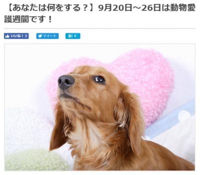 2019 ペット葬儀マップ 中央行事動物愛護フェスティバル