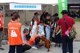 2019.9.14 中央行事フェスティバル東京都愛玩動物協会