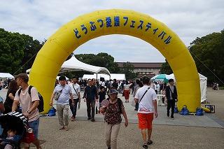 2019.9.14 中央行事フェスティバル6