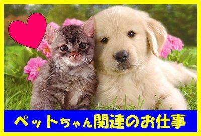 ペットちゃん関連のお仕事バナー