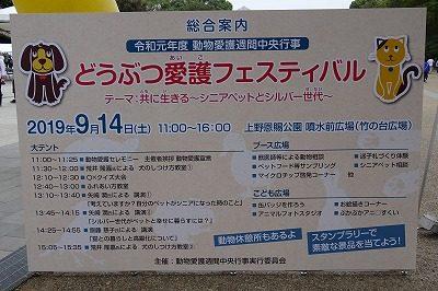 2019.9.14 中央行事フェスティバル