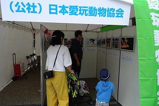 2019.9.14 中央行事フェスティバル10