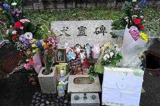 2019.9.21 JKC動物霊園慰霊祭18