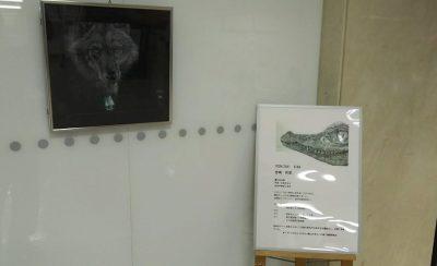 201910 吉崎莉菜 鯖江市役所