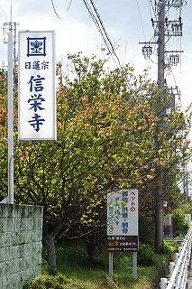2019.11.14 信栄寺お参り