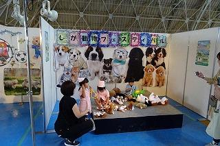 2019.9.22 しが動物フェスティバル10